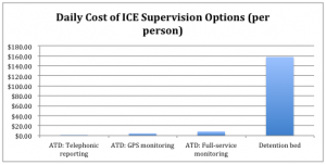 DailyCostICESupervisionOptions